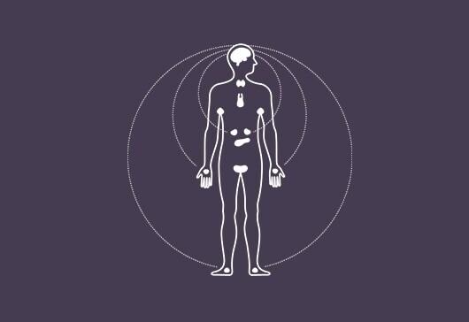 Finde mehr über die Schweißzonen des Körpers heraus